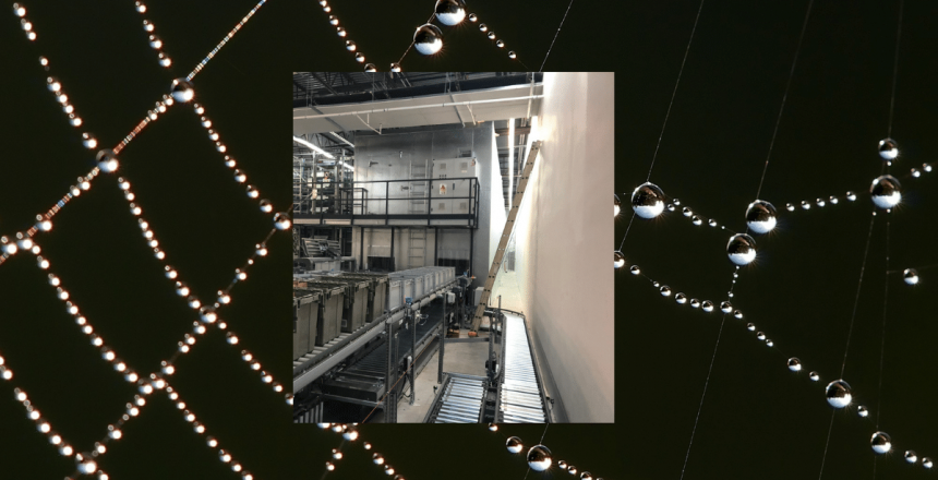 Walk-in cooler with robotics in a spider web with condensation